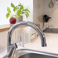 わたしのお気に入り/リクシル/ナビッシュ/LIXIL/キッチン/住まい/... キッチンの水栓はリクシルのナビッシュ! …