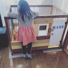 DIYプランナー/窓枠DIY/ゲージ/第2弾/ペット/ハンドメイド/... (2枚目)