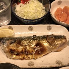 夕飯メニュー 某テレビ番組で某芸能人が、鯖の塩焼きで白…