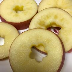 おやつ/いただき物/りんご/スイーツ お友達に りんごを いただきました✨ 我…
