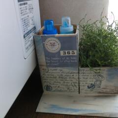 diy201604/セリアリメイク/収納 セリアのキューブボックス3個で洗剤の居場所