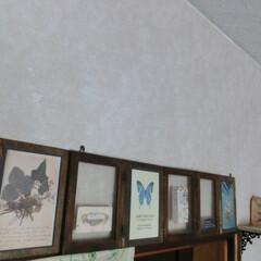 壁インテリア/木箱のフタリメイク/棚ⅮIY/部屋作り いつも思う。部屋の出入り口上部から、天井…