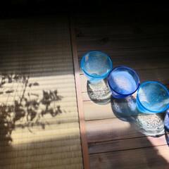 ガラスの器/光と影/夏の日差し/夏色のグラス/涼夏 夏の西日…光と影…並んだ水色と藍色のガラ…