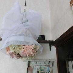 リネン/清涼感/真っ白/リサイクル 真っ白なハリハリ感のあるリネンの袋、この…