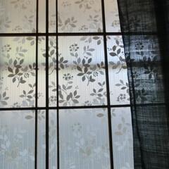 遮熱シート/障子/夏インテリア/住まい/暮らしの工夫/和室 2階和室の障子戸… 障子紙の代わりに、遮…
