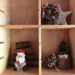 クリスマス雑貨/天然木/ドライパーツ/ダイソー 何年もこの時期に欠かせないミニクリスマス…