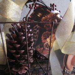 クリスマスインテリア/松ぼっくり/赤い実/カゴの中のクリスマス 錆び錆びカゴの中にクリスマスのイメージで…