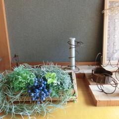 夏インテリア/和風玄関/玄関インテリア/竹籠/フェイクグリーン/涼夏 お盆休みに手に入れたお土産の竹籠にフェイ…
