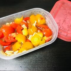 夏野菜/サラダ/夏バテ/ポン酢/料理/もう1品/... ミニトマト スライスチーズ 玉ねぎのみじ…