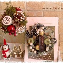 クリスマス/Christmas/壁掛け/ドライ/可愛い/かわいい/... 人気の天然素材を使用したナチュラルなリー…