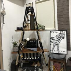 ハシゴ/アンティーク/ハンモック/キャットタワーDIY/キャットタワー/猫のいる暮らし/... 飾り棚をキャットタワーにDIY。 . .…(2枚目)