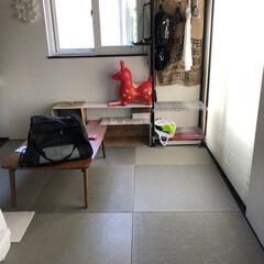 猫のいる暮らし/猫とインテリア/にゃんこ同好会/LIMIAペット同好会/ねこと暮らすお部屋 ネコちゃんを買う前に、 和室をセルフプチ…(3枚目)