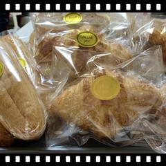 リベンジ/クロワッサン/猫/手作り/パン クロワッサン🥐リベンジ😤 昨日から生地を…(1枚目)