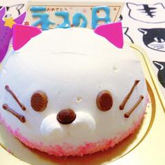 猫の日/猫/アメショ/猫ねこ コージーコーナーで ねこケーキGET💖✨…(1枚目)