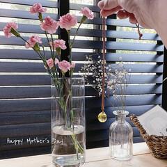 母の日カーネーション/母の日のプレゼント/母の日/LIMIAインテリア部/雑貨/ハンドメイド/... Happy Mother's Day♡ …