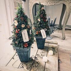 暮らしを楽しむ/プリザーブドグリーン/クリスマス雑貨/クリスマスツリー/クリスマス/ハンドメイド/... 今年は、プリザーブドグリーンのクリスマス…