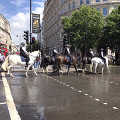 風景 ロンドンに行ってた時の子どもから 騎馬隊…(1枚目)