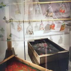 夏祭り/夏対策/夏インテリア/季節インテリア 深水さんの展示会行ってまいりました 全て…