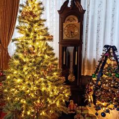 デコレーション/ツリー/クリスマス/リビング/クリスマスツリー あと一週間でクリスマス!  サンタクロー…(2枚目)