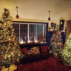 デコレーション/ツリー/クリスマス/クリスマスツリー クリスマスのデコレーションは暗いところと…(1枚目)