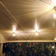 ライト/電球/カインズホーム 2階廊下の電気を、カインズホームのLED…(1枚目)