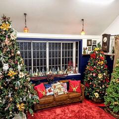 デコレーション/ツリー/クリスマス/クリスマスツリー クリスマスのデコレーションは暗いところと…(2枚目)