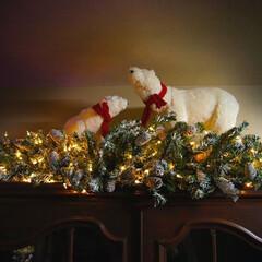 クリスマス/ガーランド/雪/白熊/パインコーン 2年ぐらい前にセールで購入した白熊。  …