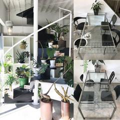 ステンレス階段/デザイン階段/グリーン/green/ショールーム 静岡県静岡市 カフェ「and KITCH…