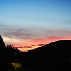 空/帰宅時/秋の気配…/夕焼け 今日も暑かったですが 無事に1日が終わり…
