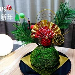 あけおめ/苔玉/DAISO/松飾り 🎍明けましておめでとうございます🎍 今年…