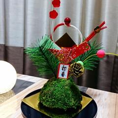 あけおめ/苔玉/DAISO/松飾り 🎍明けましておめでとうございます🎍 今年…(2枚目)
