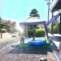 住まい おうちプール 暑いのでとにかく水遊び。 …