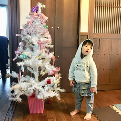 古民家風/クリスマス/クリスマスツリー/100均/ダイソー/住まい 娘、フードをかぶったら なんだかクリスマ…