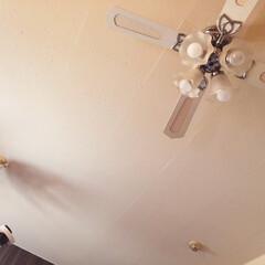 事務所/照明/照明器具/天井/手作り/トイレットペーパーの芯/... 事務所の天井。  このアンバランスな崩れ…