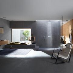 ハンスグローエ/アクサー/ドイツ/水栓/浴室・風呂/デザイン/... アクサーワン バス・シャワー水栓に求めら…