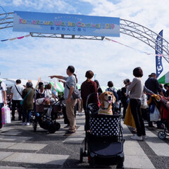 ビーグル犬/ビーグル/いぬ/犬/LIMIAペット同好会/LIMIAペット部 先日、駒沢公園で行われた 「わんこ祭り」…