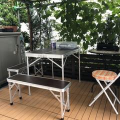 グリーンカーテン/藤棚/ウッドテラス/庭BBQ 梅雨の合間の晴れた夜 坪庭のウッドテラス…