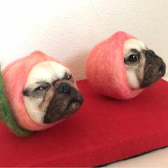 季節飾り/桃/🍘/雛人形/羊毛フェルト/ハンドメイド/... 羊毛フェルトで作った桃犬の雛人形。  桃…(4枚目)
