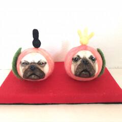 季節飾り/桃/🍘/雛人形/羊毛フェルト/ハンドメイド/... 羊毛フェルトで作った桃犬の雛人形。  桃…(3枚目)