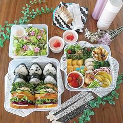ランチボックス/ランチ/お弁当作り/サンドイッチ/おにぎり/ピクニック/... 4.29昭和の日 お天気が良いので子ども…