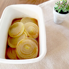 簡単レシピ/タマネギ/玉ねぎ/マリネ/常備菜レシピ/常備菜/... 日持ちおかず 常備菜 アイディアのページ…