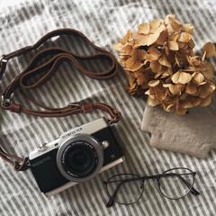 記録/暮らしの道具/カメラ女子/ドライフラワー/オリンパス/OLYMPUS/... ミラーレス一眼の調子が悪く 修理に出して…