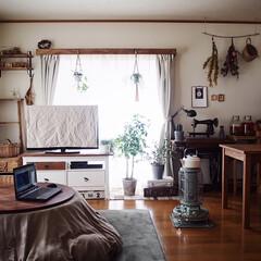 アラジン ブルーフレームヒーター グリーン BF3911-G 対流型 石油ストーブ 木造7畳 コンクリート10畳 | アラジン(電気ストーブ)を使ったクチコミ「今日はお家でゆっくり過ごしました🏠 いつ…」