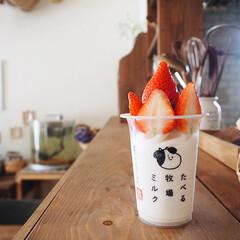いちご/おうちカフェ/ミルク/ファミマ/アレンジレシピ/たべる牧場ミルク/... 一時期ハマっていた ファミマのたべる牧場…