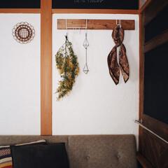 ミモザ/ナゲシレール/LABRICO/漆喰/元和室/DIY/... 先日、漆喰を塗った壁に LABRICOさ…
