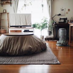 賃貸/インテリア/interior/こたつ/こたつのある部屋/レトロ/... こたつのある部屋☺️♥︎ まるいこたつは…