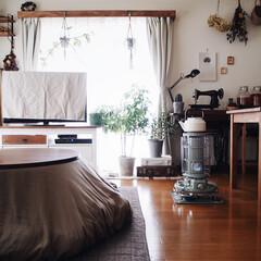 リビング/レトロ/アラジンストーブ/カーテンボックス/こたつのある部屋/こたつテーブル/... 今日も凍えるような寒さ☃︎✱ 雨も降って…