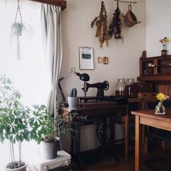 インテリア/賃貸/お花のある暮らし/古民家風/レトロ/DIY/... 小さいカラフルなお花を購入したので 部屋…