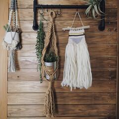 フェイクグリーン/板壁/タペストリー/プラントハンガー/織物/織り機/... 昔はマクラメ編みの プラントハンガーやタ…