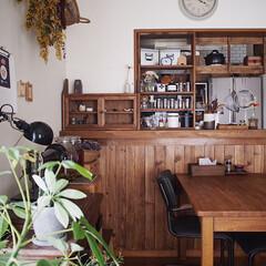 インテリア/ダイニング/漆喰壁/板壁/木の家/観葉植物/... 我が家で1番最初にDIYした場所は スパ…